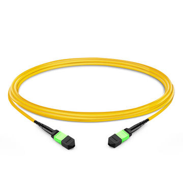 1m (3ft) 12 Fibers Female to Female MTP Trunk Cable Polarity B Plenum (OFNP) OS2 9/125 Single Mode