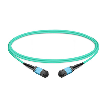 1m (3ft) 12 Fibers Low Insertion Loss Female to Female MPO Trunk Cable Polarity B LSZH OM3 50/125 Multimode Fiber